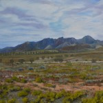 Road to Leigh Creek – western side of Wilpena